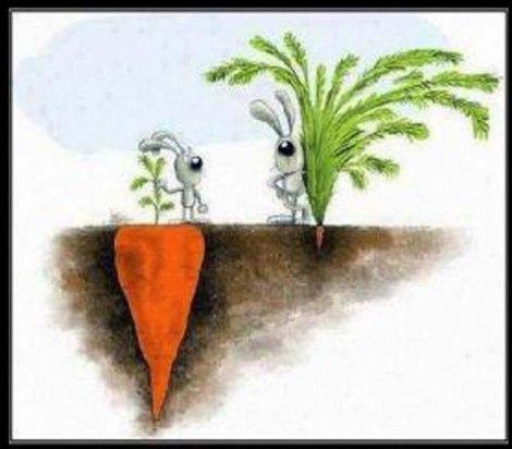 Sucesso nem sempre é o que se vê.  (Créditos: Feel Positive)
