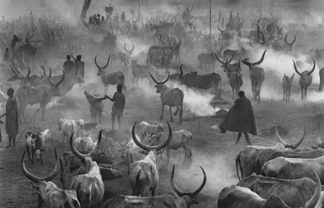 Neste acampamento de gado (Sul do Sudão, há vários montes de excrementos de vaca queimando para que a fumaça afaste insetos. 2006. (Foto: Sebastião Salagado/Exposição Sesc)