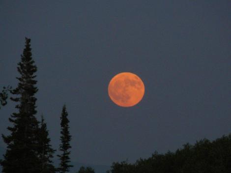 (Lua alaranjada normalmente mais baixa no horizonte. Créditos: morguefile)